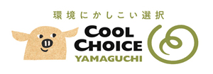 coolchoices.jpg